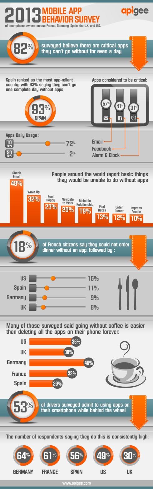 2013Apigee_Infographic_02